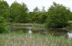 (careth@2012) Tags: reflection nature landscape scenery view scenic scene