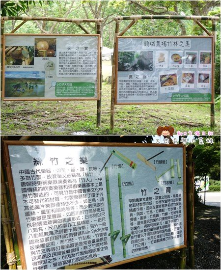 頭城農場竹子樂器 (9).jpg