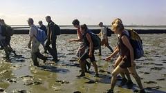 Crossing the mudflats at low tide to the Dutch island Ameland (janvandijk01) Tags: dutch island crossing tide low ameland mudflats