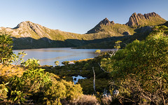 Cradle Mountain and Dove Lake (laurie.g.w) Tags: park mountain lake landscape bush dove australia national tasmania cradle