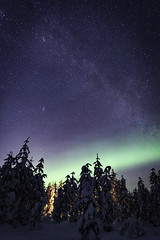Milky Way Aurora (craigmdennis) Tags: sky night forest stars sweden aurora milkyway aurorachasing