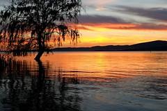 At twilight on the lake (enzo rettori) Tags: sunset dusk twilight lake trasimeno umbria perugia water sun