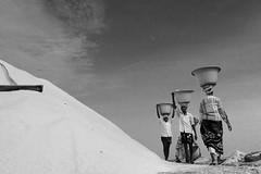 Saltpans (suresh31589) Tags: blacknwhite salt work man hardlife tamilnadu marakkanam