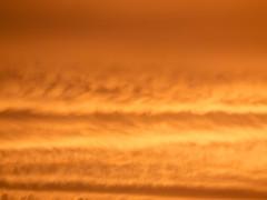 _6262660 (elsuperbob) Tags: sunset sky colors clouds michigan detroit cloudscape alienworlds