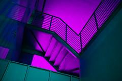 Neuromancer II (elsableda) Tags: africa light shadow urban colors night stairs southafrica lights neon noir shadows purple tech walk south midnight cyberpunk durban dystopia dystopian neuromancer