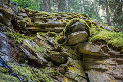 MH5_9192 (memories by Mark) Tags: rockies alberta banff rockymountains banffnationalpark johnstoncanyon