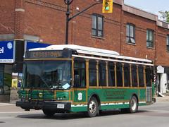 Collingwood Public Transit 702 (YT | transport photography) Tags: max bus public collingwood eldorado ii transit ez rider colltrans