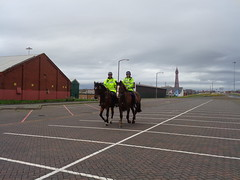 Mounted Police return from patrol in Blackpool (j.a.sanderson) Tags: mounted police return from their beat blackpool lancashireconstabulary mountedbranch horse horses policehorses patrol
