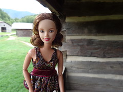 At Dan Lawson's Place (larry_boy17) Tags: trip vacation mountains dan frank outside outdoors doll cove getaway tennessee great north ken barbie skipper september teen carolina homestead smoky smokies sinatra lawson cades