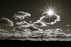 Vineyard Sky (winestains) Tags: sky blackandwhite bw sun clouds vineyard flare sunflare