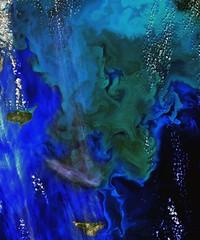 Phytoplankton Bloom in the Bering Sea (sjrankin) Tags: edited nasa noaa usgs beringsea phytoplankton northpacificocean pribilofislands phytoplanktonbloom landsat8 11september2015
