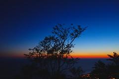 Adriatic Light (rasdiggity) Tags: sunset sea sky tree silhouette europe croatia balkans dubrovnik adriatic adriaticsea russellsticklor rasdiggity