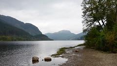 Trossachs DSC_3493 (iloleo) Tags: nature landscape scotland shoreline scenic hills loch trossachs nikond7000