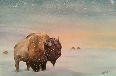 The Sentry, original bison watercolor by Jason E Doucette. Size is 11x15 on 300lb arches watercolor paper. (LaughingGull) Tags: nature animal painting buffalo bison tatonka watercolot