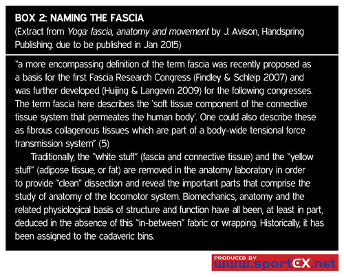 43DY30_2 (sportEX journals) Tags: rehabilitation fascia massagetherapy musculoskeletal sportex sportsinjury sportsmassage sportexdynamics sportsrehabilitation biotensegrity
