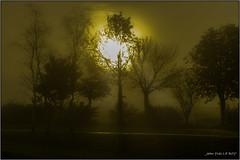 Lever de soleil dans la brume - Sunrise in the fog (jyleroy) Tags: sun france fog sunrise canon river landscape eos soleil brittany europe bretagne rivière breizh brouillard leverdesoleil finistère landerneau elorn 700d