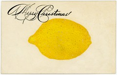 I'm Sending You a Lemon for a Merry Christmas (Alan Mays) Tags: christmas xmas old fruits yellow handwriting vintage paper cards typography funny holidays humorous comic antique humor illustrations ephemera lemons postcards type christmascards greetings amusing twentythree fonts printed skidoo sarcasm typefaces 23skiddoo 23skidoo greetingcards scram beatit december25 fads catchphrases skiddo skiddoo skidoo23 handyoualemon 23skiddo skiddoo23 skiddo23