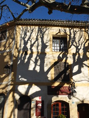 ARBRE (cathyk06) Tags: france tree french ombre shade arbre 2014 tourtour