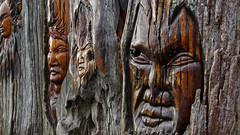 Uho - (free 1920 x 1080 desktop) (Pete Prue) Tags: desktop tree carved log heart free carving driftwood treetrunk maori uho freedesktop treetrunkcarving carveddriftwood peterprue kāhia