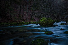 The rock & the river (ThomasJacquemotPhotographie) Tags: rock river riviere paysage roche poselongue