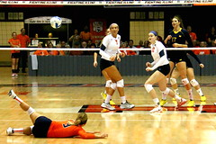 Donnelly digs deep (RPahre) Tags: brandidonnelly universityofillinois champaign illinois universityofmichigan huffhall huff volleyball robertpahrephotography copyrighted donotusewithoutwrittenpermission
