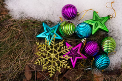 Grass (Theresa Best) Tags: snowflake christmas blue winter snow green grass glitter photography star visions colorful december purple best theresa ornament sprouting theresabest fmsphotoaday sproutingvisions