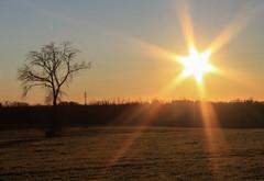 2015_002 (casirfm) Tags: sunset canon tramonto january brianza gennaio 2015 casirfm canoneos1100d brianzashire
