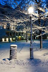 357 - Park pals (UdePics) Tags: park snow lamp helsinki bin ruttopuisto project365 rx100