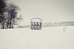 IMG_9564 (N'Grid) Tags: winter snow hiver neige