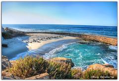 Jolla view (Olivia Heredia) Tags: california winter usa naturaleza beach nature us unitedstates sandiego playa lajolla socal invierno sealions hdr highdynamicrange lajollacove leonesmarinos tonemapped tonemapping 1exp oliviaheredia oliviaherediaotero