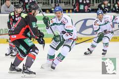 "DEL15 Düsseldorfer EG vs. Augsburg Panthers 28.12.2014 021.jpg • <a style=""font-size:0.8em;"" href=""http://www.flickr.com/photos/64442770@N03/16170241316/"" target=""_blank"">View on Flickr</a>"