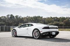 DF8A9739 (Lamborghini Houston) Tags: auto car automobile spots exotic clutch dual lamborghini supercar automobiles lambo ldf lamborghinihouston lp610 lp6104 lamborghinihuracan