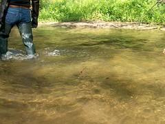 EX000022 (hymerwaders) Tags: new wet muddy waders matsch nass watstiefel