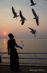 Mawlamyaing - Feeding the Birds (Rolandito.) Tags: sunset bird birds silhouette asia feeding burma south silhouettes east myanmar southeast birma moulmein birmanie birmania mawlamyaing