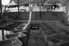 Lavaderos pblicos de Jojutla (MARTN GOROSTIOLA) Tags: mxico bn morelos jojutla