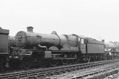 5076 (Gricerman) Tags: br steam western gladiator gwr 460 britishrailways 5076 oldoakcommon castleclass brsteam oldoakcommonshed westernsteam steamwestern brwestern steambr westernsteambr