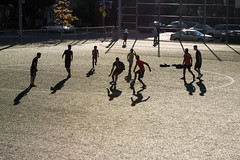Montral, 2016. Champions! (Jacques Lebleu) Tags: sport youth ball circle foot football shadows play montral montreal soccer ballon silhouettes jeunesse deporte bola juego siluetas futebol contrejour ftbol backlighting jeu cercle ombres montralnord parcottawa