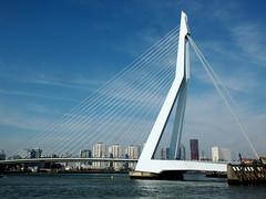 Erasmusbrug, Rotterdam (twiga_swala) Tags: bridge haven holland netherlands dutch architecture port river swan rotterdam erasmus south central nederland engineering cable maas erasmusbrug stayed nieuwe theswan zuidholland dutchs
