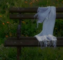 Forgotten scarf (Sappho et amicae) Tags: detail scarf bench eljkagavrilovi