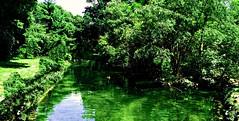 laghetto (pattyconsumilano) Tags: green pond silence laghetto silenzio greenarea spazioverde