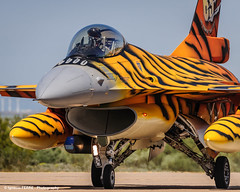 Belgian tiger (NTM 2016) (Ignacio Ferre) Tags: airplane nikon fighter aircraft tiger zaragoza f16 viper avin tigre nato otan tigermeet fightingfalcon belgianairforce lezg