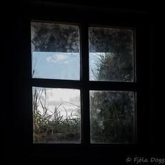natural light (Fjola Dogg) Tags: old building window canon island is iceland islandia spring europe capital reykjavík ísland islande gluggi izland islanda islândia bygging southiceland ijsland islanti islando gluggar torfbær evrópa izlanda árnessýsla lislande fjoladogg ãsland höfuðborg fjóladögg islann höfuðstaður canonpowershotg7x canong7x verðbúð