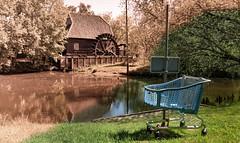 Shopping Van Gogh (Jorden Esser) Tags: park trees water grass shoppingcart watermill hss gennep genneperparken nederlandvandaag genneperwatermolen sliderssunday vangoghtrail gennepermill