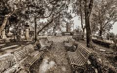 Benches (Francesco Impellizzeri) Tags: monochrome canon sicily sicilia erice