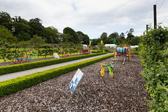 cricket_2015-41.jpg (Fingal County Council) Tags: fingal newbridgehouse flavours donabate pwp flavoursoffingal fingalcoco fingalcountycouncil