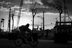 An awkward silence has fallen (Thomas Demeulemeester) Tags: barcelona trees bw man byn bike stairs spring day afternoon streetlights tram cranes biker backlighting cloudysky urbanlandscape blackwandwhite roadpannels