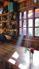 raio de sol (jakza - Jaque Zattera) Tags: janela raiodeluz vasodeflor casa