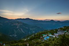 TST_3698 (ym80045) Tags:  cingjingfarm  nantou