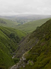 (Turbogirlie) Tags: wales walking countryside hills powys midwales forestrycommission