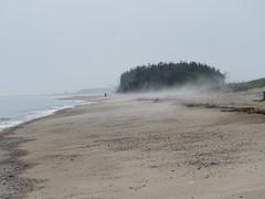 Plage Ste-Marguerite (anng48) Tags: plagestemarguerite clarkecity beach plage fog brouillard cotenord quebec qc canada